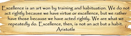 Excellence-Aristotle-customer-service